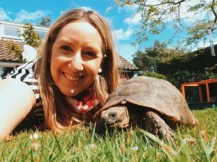 Tukka the Tortoise