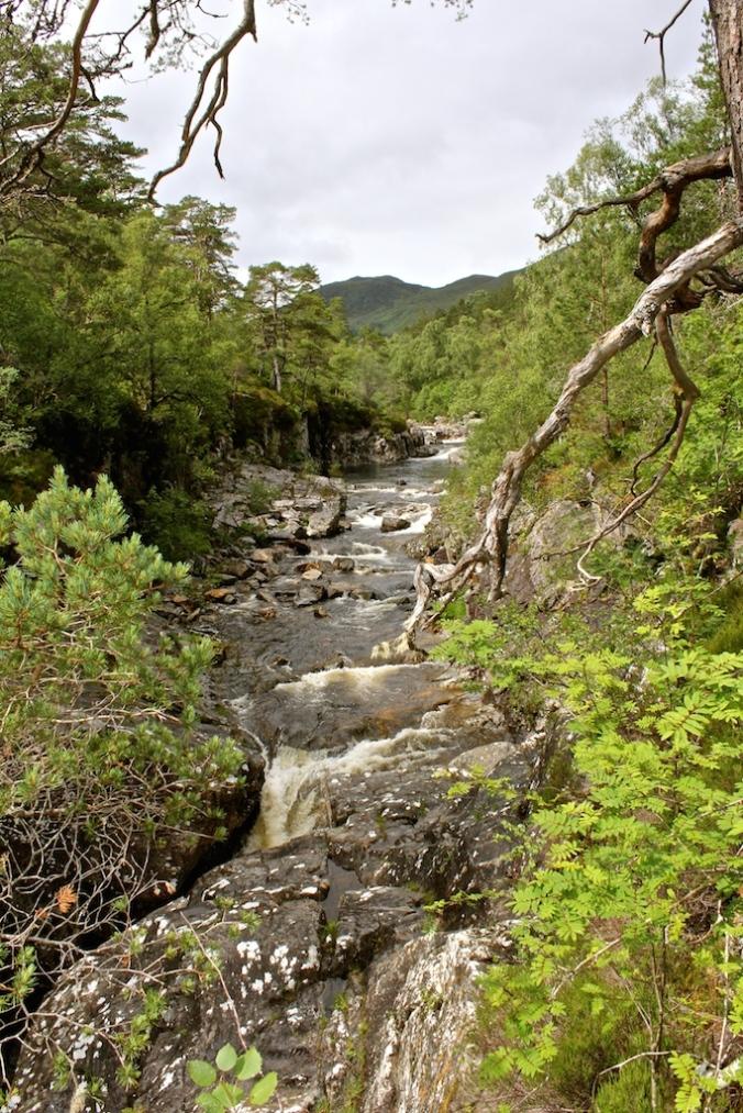 Dog Falls - Scotland